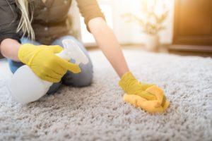 Spring Clean Carpet